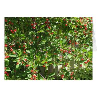 Cerezas rojas de la empanada tarjeta de felicitación
