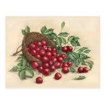 Cerezas rojas dulces tarjeta postal