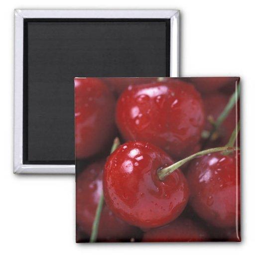 Cerezas rojas grandes imán cuadrado