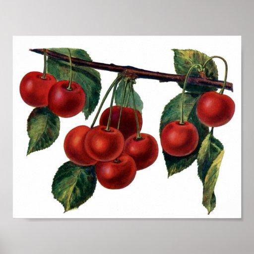 Cerezas rojas posters