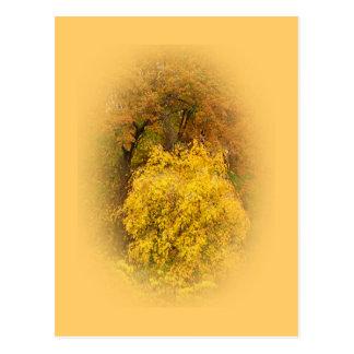 Cerezo de los placeres del otoño postal
