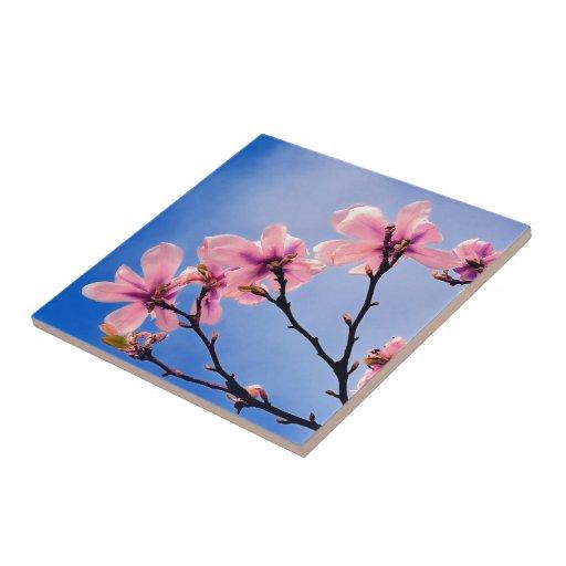 Cerezo florecido azulejo cuadrado pequeño