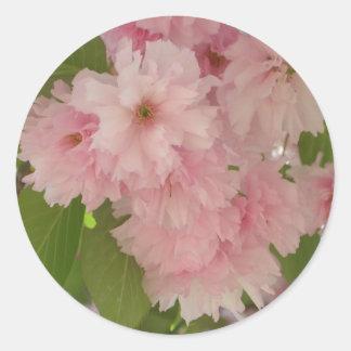 Cerezos florecientes dobles II Pegatina Redonda