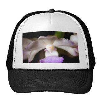 cerrado para arriba de la flor de la orquídea gorros bordados