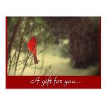 Certificado cardinal del regalo de vacaciones postales
