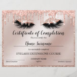 """Certificate of Completion Award lashes Course<br><div class=""""desc"""">Certificate of Completion Makeup artist Wink Eye Beauty Salon Lash Extension Course Completion</div>"""