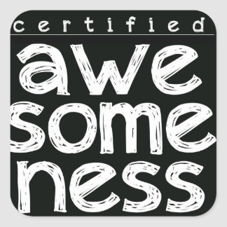 CERTIFIED AWESOMENESS STICKERS