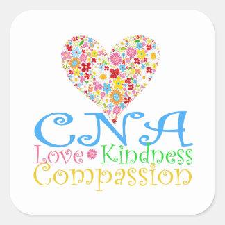 Certified Nurse Gifts Sticker