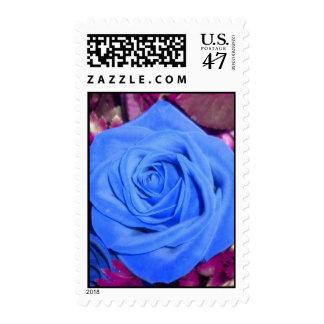 Cerulean Blue Rose Postage