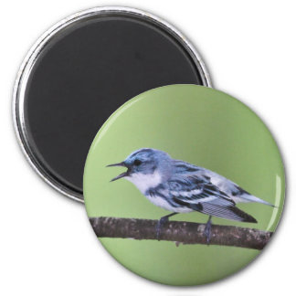 Cerulean Warbler Fridge Magnet