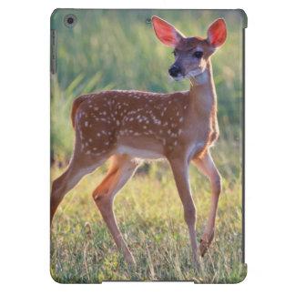 Cervatillo Blanco-Atado de los ciervos (Odocoileus Funda Para iPad Air