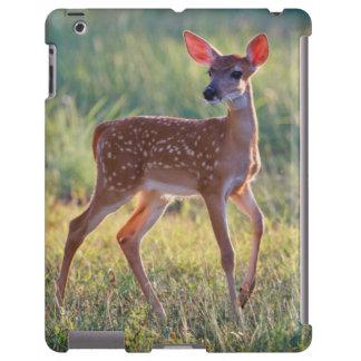 Cervatillo Blanco-Atado de los ciervos (Odocoileus Funda Para iPad