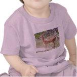 Cervatillo Camiseta