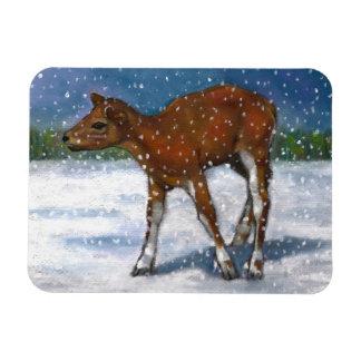 Cervatillo, ciervo del bebé en chubasco de la niev imán