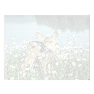 Cervatillo Ciervo-joven de la mula en el campo de  Plantilla De Membrete