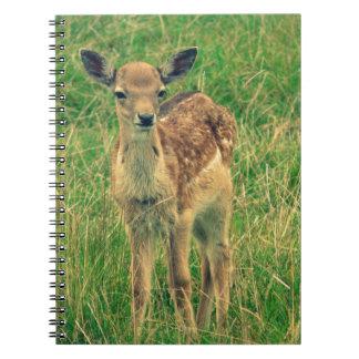 Cervatillo de los ciervos libros de apuntes con espiral