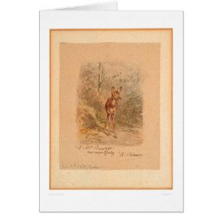 Cervatillo en el bosque (0567A) Tarjeta De Felicitación