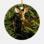 Cervatillo en el ornamento de los árboles de pino ornamentos de reyes magos