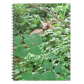 CERVATILLO en hojas verdes del corazón --- Libro De Apuntes