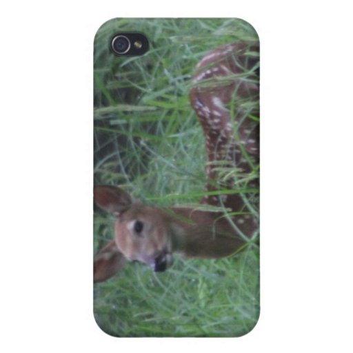 Cervatillo iPhone 4 Protector