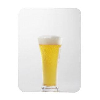 Cerveza 5 imanes rectangulares