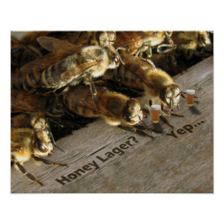 ¿Cerveza dorada de Bees_Honey de la barra? Póster