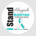 Cervical Cancer I Stand Alongside My Best Friend Round Stickers