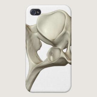 Cervical Vertebra Cover For iPhone 4