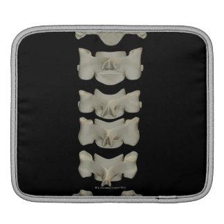 Cervical Vertebrae iPad Sleeve