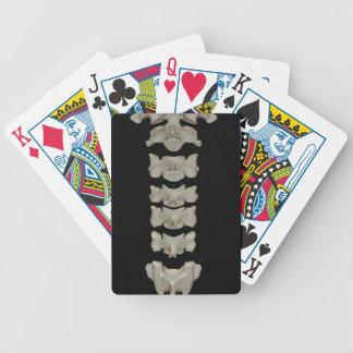 Cervical Vertebrae Playing Cards