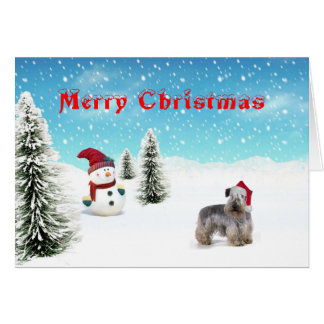 cesky Terrier Christmas Card