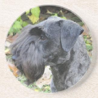 Cesky Terrier Coaster