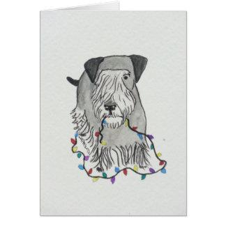 Cesky Terrier con las luces de navidad Tarjeta De Felicitación
