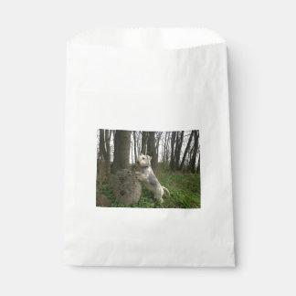 Cesky-Terrier-en forrest.png Bolsas De Recuerdo