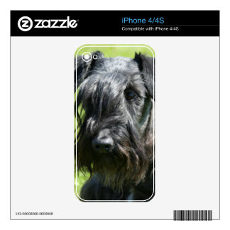 cesky-terrier.png skins for the iPhone 4