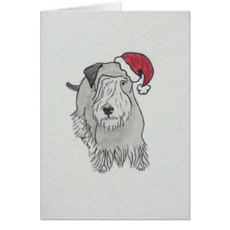 Cesky Terrier Santa Hat Card