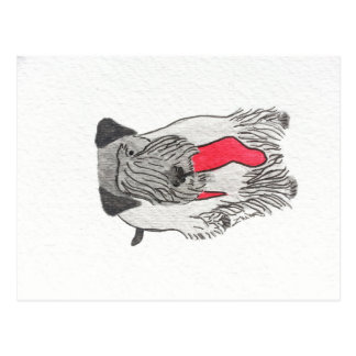 Cesky Terrier with Stocking Postcard