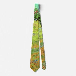 Césped soleado en un parque público, bella arte de corbata