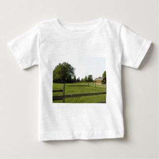 Césped verde con la cerca y los árboles de madera poleras