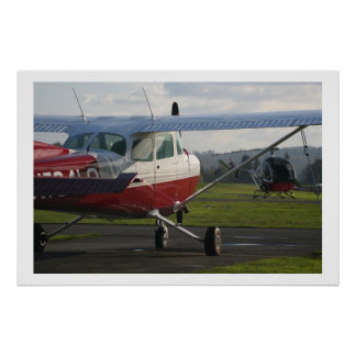 Cessna 172 and Schweizer 300C Poster