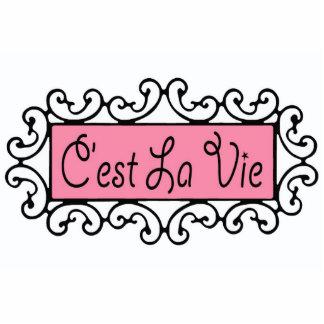 C'est La Vie ~ Acrylic  Photo Sculpture