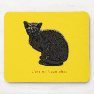 c'est un beau chat mouse pad
