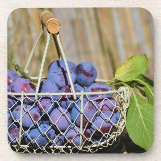 Cesta de ciruelos púrpuras posavasos de bebidas