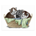 Cesta de gatitos postal