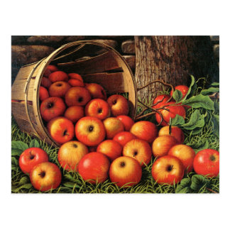 Cesta de manzanas tarjeta postal