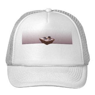 Cesta de mimbre con los gatitos gorras