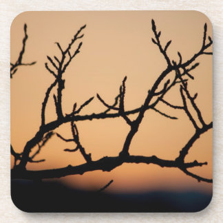 Cesta de puesta del sol posavasos