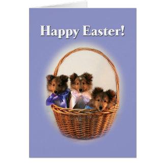 Cesta de Sheltie Pascua Felicitación
