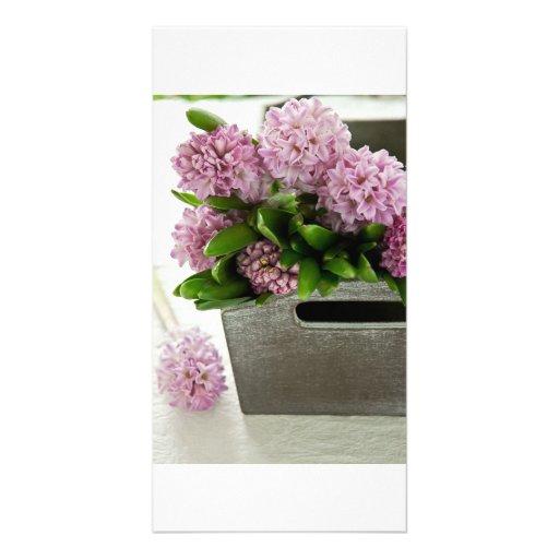 Cesta del jacinto tarjeta fotográfica personalizada