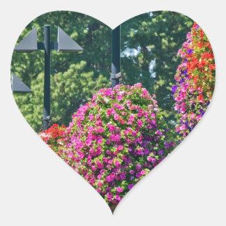 Cestas colgantes de la flor calcomania corazon